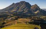 Best Vineyard in Africa